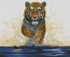"Картина стразами ""Гордый тигр"""