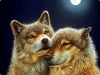 "Картина стразами ""Волк и волчица"""